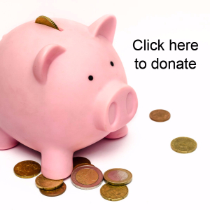 click here Donate to HousingLink